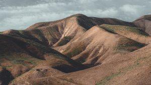 Brown Hills
